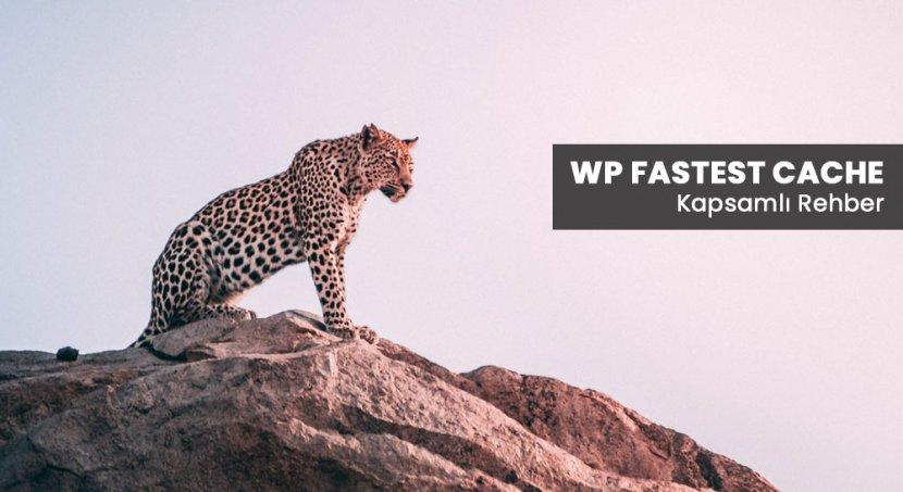 WP Fastest Cache Eklenti Kurulumu ve Ayarları