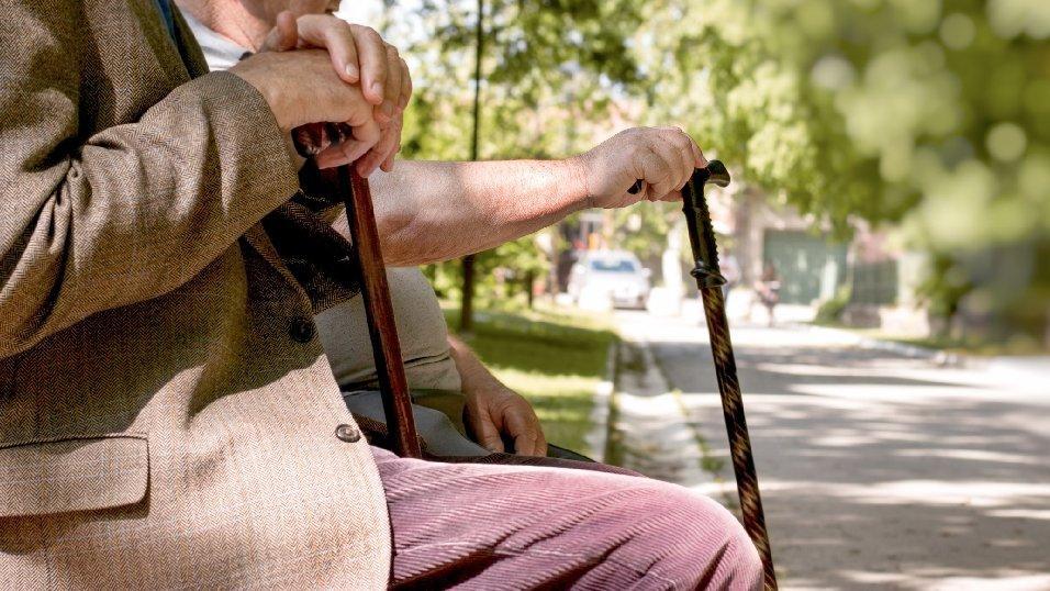 Emekli Maaşı Kesinti Nedenleri, Maaş Kesintisi Sorgulama